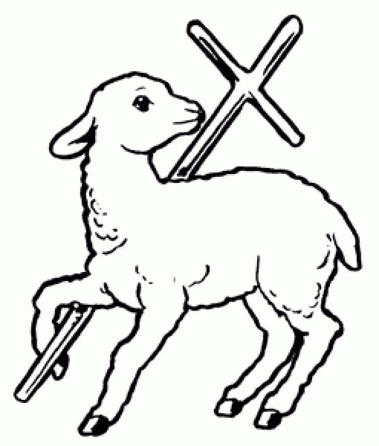 the typological symbol of the lamb 1 jesus and the passover lamb (exodus 12:1-14) hello, my name is stephen sizer please open your bible and turn with me to exodus 12 god's people were slaves in.